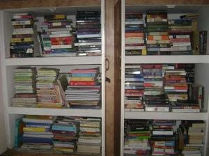 My book shelves