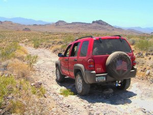 On the Trail in the Mojave Desert