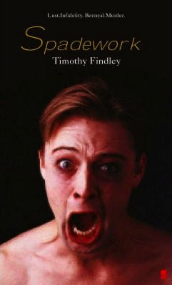 a description of timothy findley in the wars